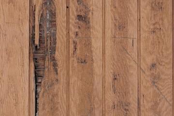 Texture - wooden wall