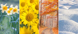 Fototapety four seasons