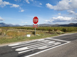 Stop sign at unmanned railway level crossing South Africa poster