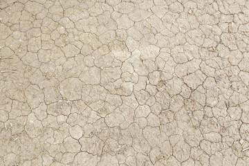 Dry cracked mud