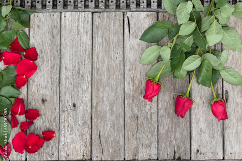 Three roses and  rose-petals on wooden background