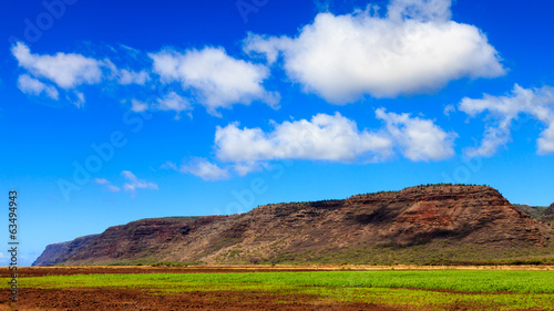 Farmland in Kauai