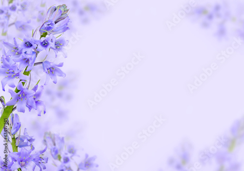 Foto Spatwand Lilac Abstract purple spring flowers background