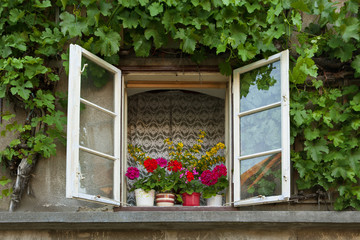 old rural window