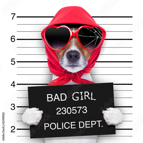 canvas print picture mugshot lady dog
