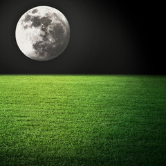 Night moon and field