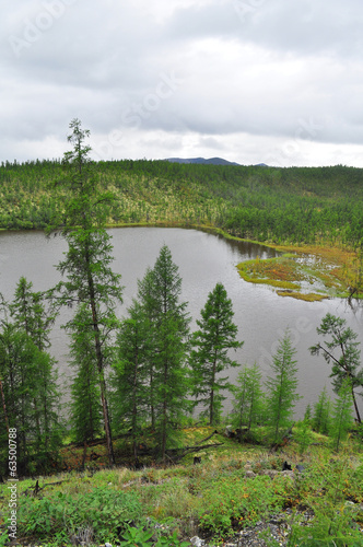 The Yakut taiga lake cloudy day.