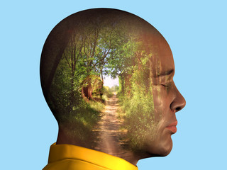 My way, mans profile with forest path inside the head
