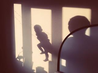 Shadows of family