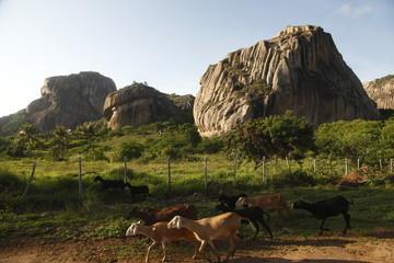 Parco statale di Pedra da Boca, Paraiba Brasil
