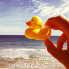 rubber duck on the beach