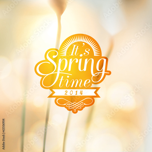 It's Spring Time typographic design with colourful background