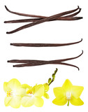 Fototapety Vanilla pods and orchid flower