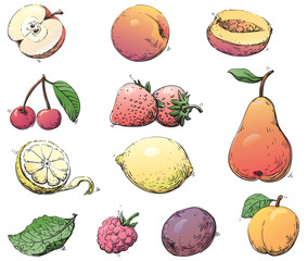 Vector set of fruits at color engraving style