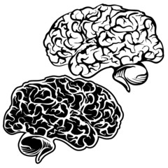 Human Brain sketch cartoon vector illustration