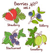 Black currant, strawberry, bilberry and gooseberry berries set 3