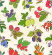 Colorful berries vector seamless pattern