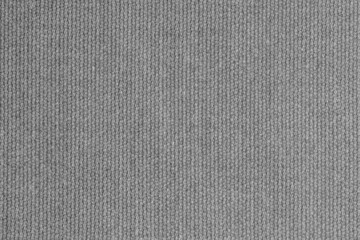 knitted woolen fabric of silvery color