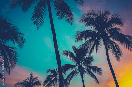 Foto Spatwand Bomen Hawaii Palm Trees At Sunset
