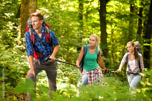 Three friends hiking through the forest