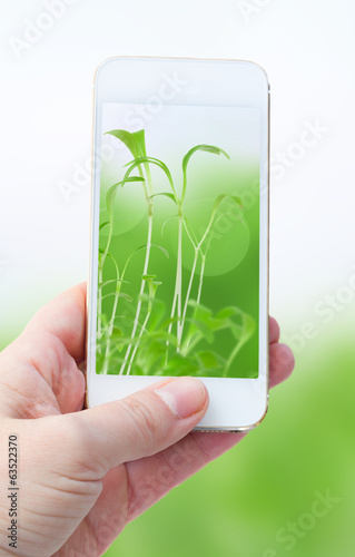 holding smart phone against green nature background