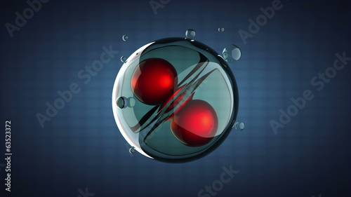 loop rotate cell division illustration