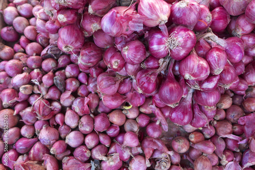 Onion in market