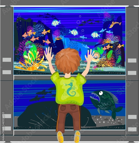 Child looking at an aquarium with marine fishes