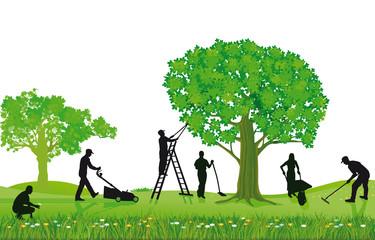 Gartenarbeiten Pflanzen und Beschneiden
