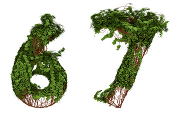 Six and seven  vine numbers.