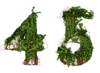 Four and five  vine numbers.