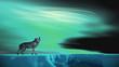 canvas print picture - Einsamer Wolf