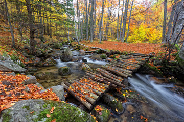 Autumn in Bulgaria