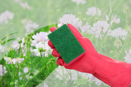 Hand with sponge cleaning dirty window