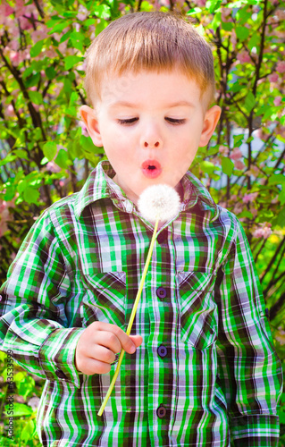 Portrait of cute boy blowing on a dandelion