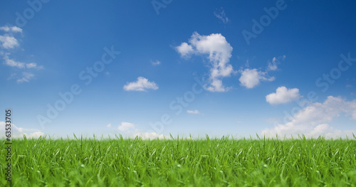 canvas print picture Landschaft / Himmel / Gras