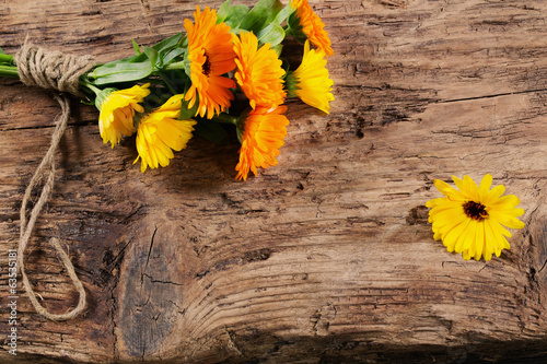 marigold on wooden background