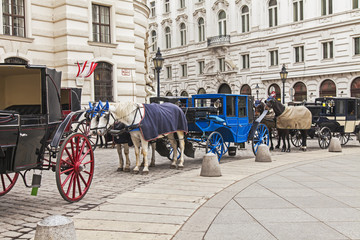 Vienna, Austria. The Vienna fiacres waiting for tourists
