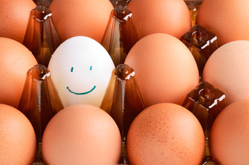 brown  and one white smile eggs in tray horizontal