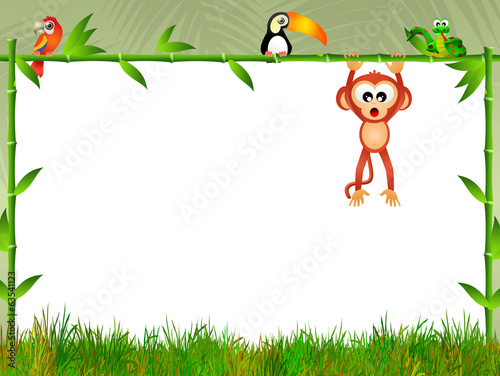 monkey with blackboard bamboo