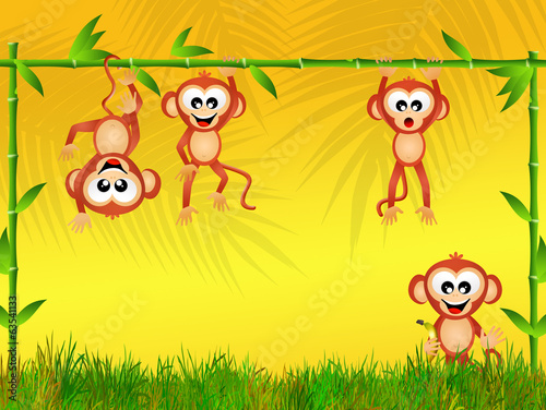 monkeys in the jungle