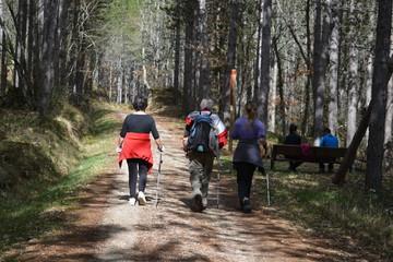 Gente caminando y descansando en una ruta en por el bosque