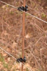 Detalle del pastor o alambrada con electricidad