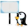 pinguino curioso spot