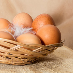 Eggs in wattled basket