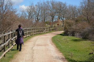 Mujer sola andando por la via verde en primavera, Burgos