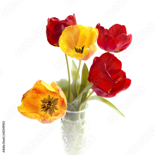Bouquet of colorful tulips.