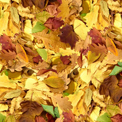 image of autumn leafs as a background