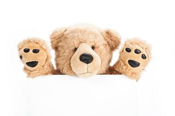 Happy teddy bear holding blank board