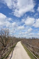 Paseo por camino de tierra bajo las nubes y el sol de primavera
